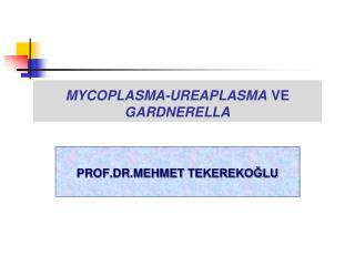 MYCOPLASMA-UREAPLASMA VE GARDNERELLA