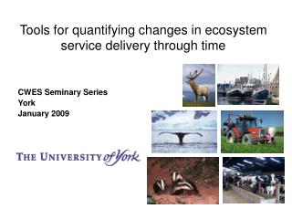 Tools for quantifying changes in ecosystem service delivery through time