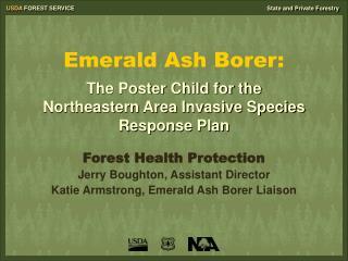 Emerald Ash Borer: