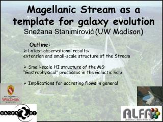 Magellanic Stream as a template for galaxy evolution Snežana Stanimirović (UW Madison)