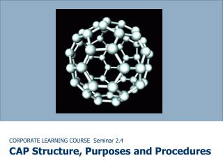 CORPORATE LEARNING COURSE Seminar 2.4 CAP Structure, Purposes and Procedures