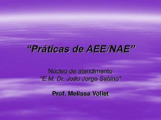 """""""Práticas de AEE / NAE"""""""