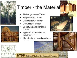 Timber - the Material