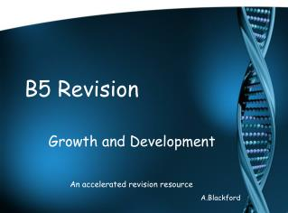 B5 Revision