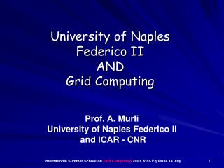 University of Naples Federico II  AND Grid Computing