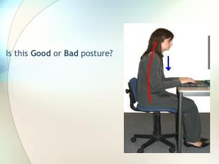 Is this  Good  or  Bad  posture?