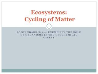 Ecosystems:  Cycling of Matter