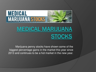 Medical Marijuana Stock Price