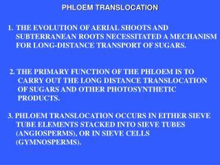 PHLOEM TRANSLOCATION