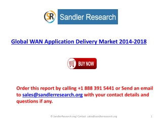 WAN Application Delivery Present Scenario and the Growth Pro