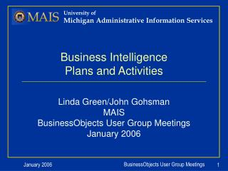 Business Intelligence Plans and Activities