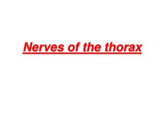 Nerves of the thorax