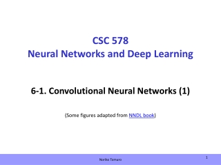 CSC 578 Neural Networks and Deep Learning