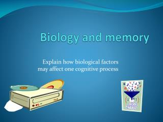 Biology and memory