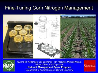 fine-tuning corn nitrogen management