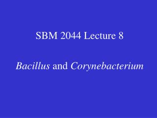 SBM 2044 Lecture 8  Bacillus and Corynebacterium