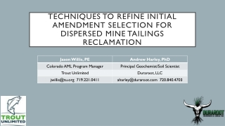 Techniques to refine initial amendment selection for dispersed mine tailings reclamation