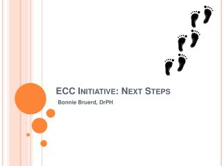 ECC Initiative: Next Steps