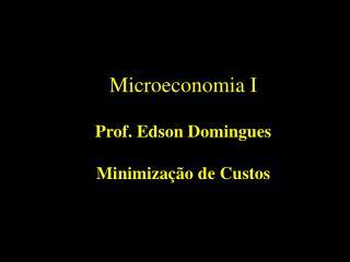 Microeconomia I Prof. Edson Domingues Minimização de Custos