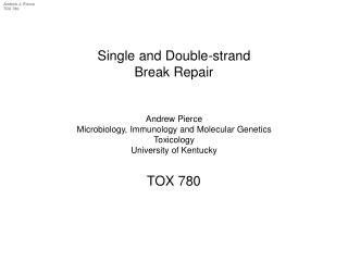 Single and Double-strand Break Repair