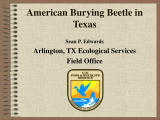 American Burying Beetle in Texas