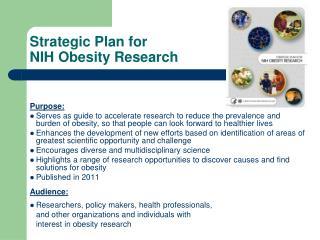 Strategic Plan for NIH Obesity Research