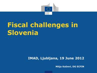 Fiscal challenges in Slovenia