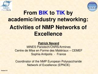 From BIK to TIK by academic/industry networking: Activities of NMP Networks of Excellence