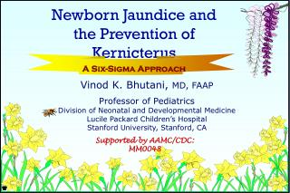Vinod K. Bhutani,  MD, FAAP Professor of Pediatrics Division of Neonatal and Developmental Medicine Lucile Packard Child