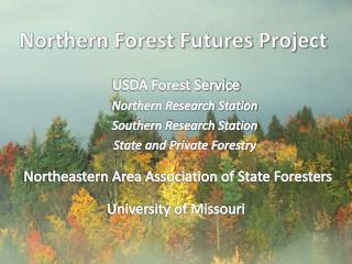 Northern Forest Futures Project
