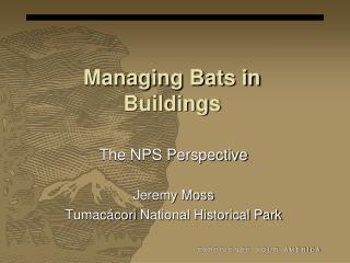 Managing Bats in Buildings