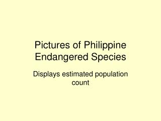 Pictures of Philippine Endangered Species