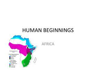 HUMAN BEGINNINGS