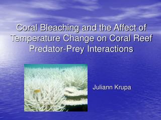 Coral Bleaching and the Affect of  Temperature Change on Coral Reef  Predator-Prey Interactions