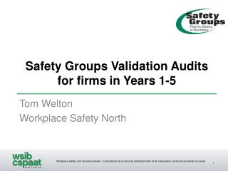Safety Groups Validation Audits for firms in Years 1-5