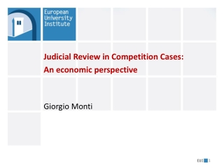 Judicial Review in Competition Cases: An economic perspective