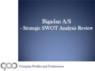 Bigadan A/S - Strategic SWOT Analysis Review