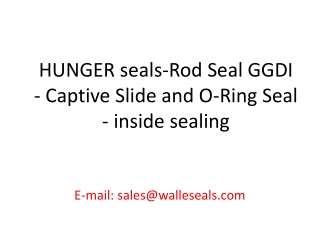 HUNGER seals-Rod Seal GGDI - Captive Slide and O-Ring Seal -