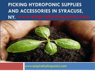 Picking hydroponic supplies and accessories in syracuse,