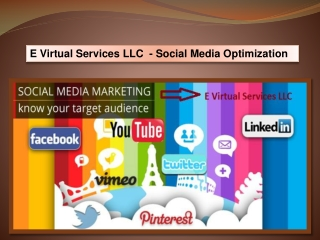 E Virtual Services LLC - Find Social Media Optimization Serv