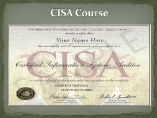 CISA Training