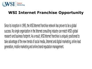 wsi internet franchise opportunity