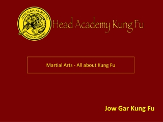 Martial Arts - All about Kung Fu