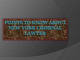 Points To Know About New York Criminal Lawyer