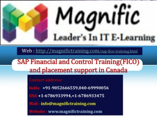 SAP Financial and Control Training and placement support in