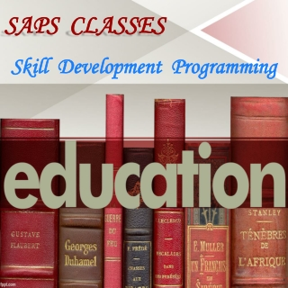 Skill Development Programming