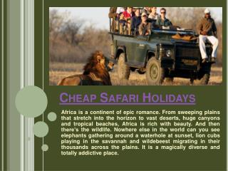Family Safari Holidays