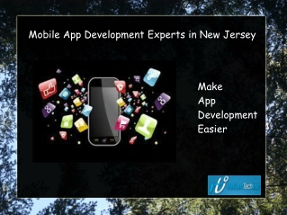 Mobile App Development Experts in New Jersey Make App Develo