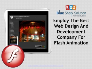 Employ Web design & development company for flash animation
