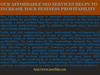 Our affordable SEO Services helps to increase your business